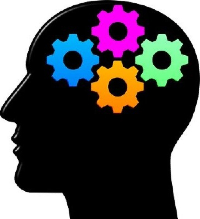 Cerebro e idiomas